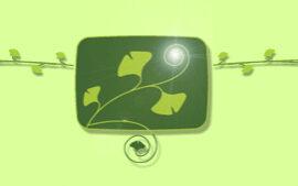 Holopathie-Naturheilpraxis